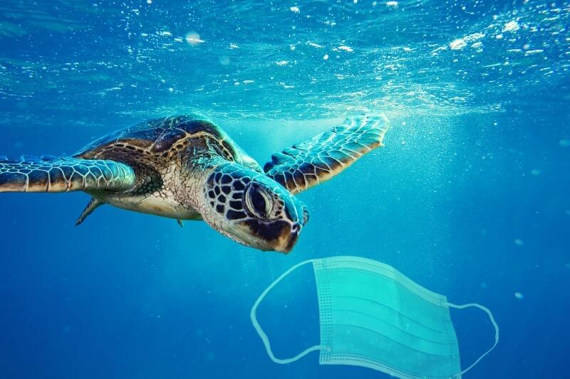 masken nachhaltigkeit einwegmasken